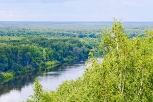 Лысая гора. Лето. Фото Варвары Ледневой